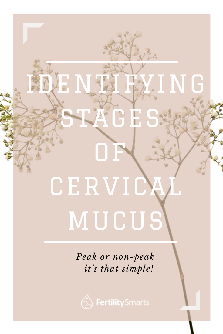 Pinterest Pin Title: Identifying Stages of Cervical Mucus
