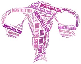How Irregular Menstrual Cycles Impact Fertility