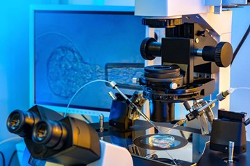 What You Should Know About Your IVF Lab