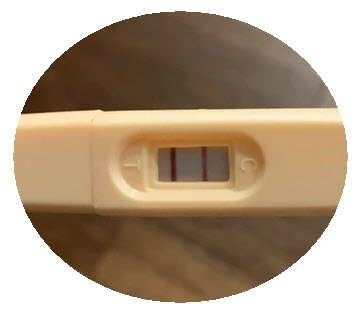 Positive Two Line Ovulation Test