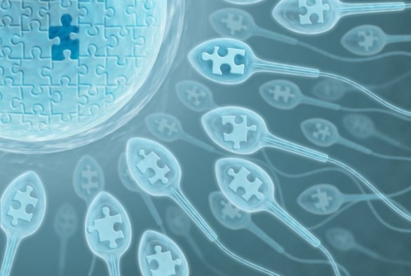 Understanding Male Infertility