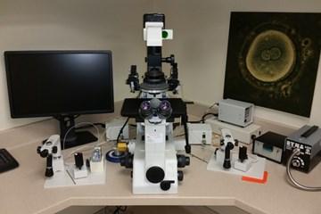 Understanding IVF Extras: Intracytoplasmic Sperm Injection (ICSI)
