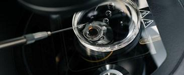 Embryo Development - 6 Days in the IVF Lab