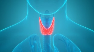 Does thyroid function affect fertility?